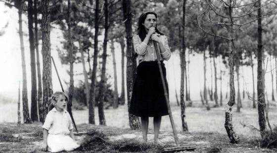Tercera Semana de Cine Portugues