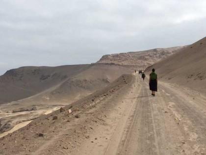 Caminata en Pisagua